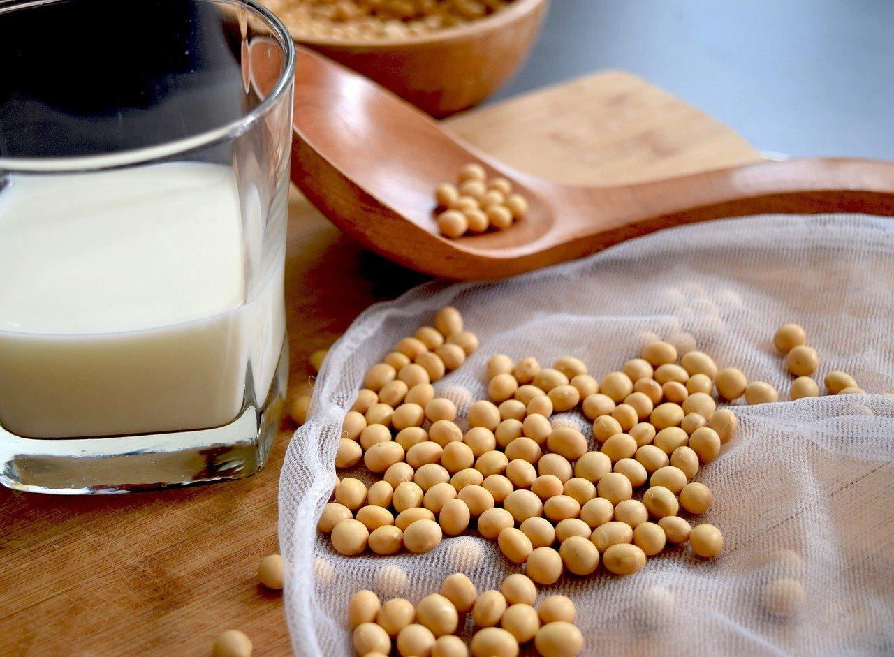 Les laits végétaux pour les allergiques